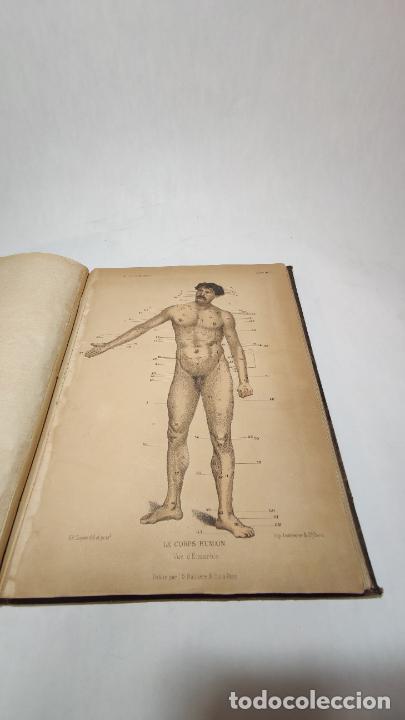 Libros antiguos: El cuerpo humano. estructuras y funciones. Eduardo Cuyer. 2 tomos. Desplegables. Madrid. 1880. - Foto 5 - 236137325
