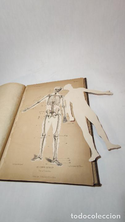Libros antiguos: El cuerpo humano. estructuras y funciones. Eduardo Cuyer. 2 tomos. Desplegables. Madrid. 1880. - Foto 6 - 236137325