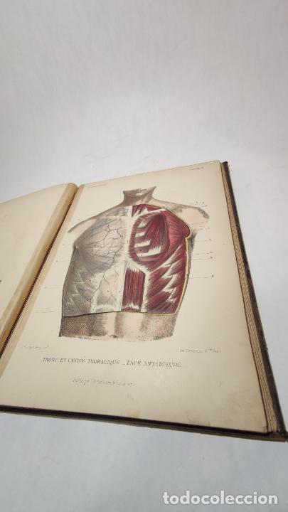 Libros antiguos: El cuerpo humano. estructuras y funciones. Eduardo Cuyer. 2 tomos. Desplegables. Madrid. 1880. - Foto 7 - 236137325