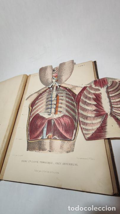 Libros antiguos: El cuerpo humano. estructuras y funciones. Eduardo Cuyer. 2 tomos. Desplegables. Madrid. 1880. - Foto 9 - 236137325