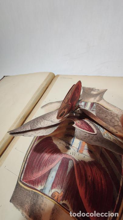 Libros antiguos: El cuerpo humano. estructuras y funciones. Eduardo Cuyer. 2 tomos. Desplegables. Madrid. 1880. - Foto 10 - 236137325