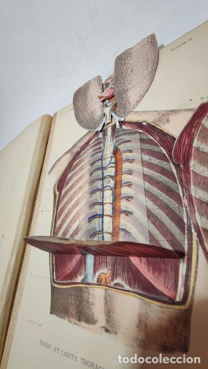 Libros antiguos: El cuerpo humano. estructuras y funciones. Eduardo Cuyer. 2 tomos. Desplegables. Madrid. 1880. - Foto 11 - 236137325