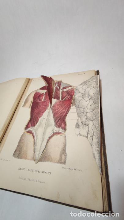 Libros antiguos: El cuerpo humano. estructuras y funciones. Eduardo Cuyer. 2 tomos. Desplegables. Madrid. 1880. - Foto 13 - 236137325