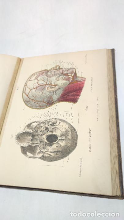 Libros antiguos: El cuerpo humano. estructuras y funciones. Eduardo Cuyer. 2 tomos. Desplegables. Madrid. 1880. - Foto 16 - 236137325