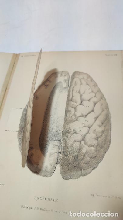 Libros antiguos: El cuerpo humano. estructuras y funciones. Eduardo Cuyer. 2 tomos. Desplegables. Madrid. 1880. - Foto 18 - 236137325