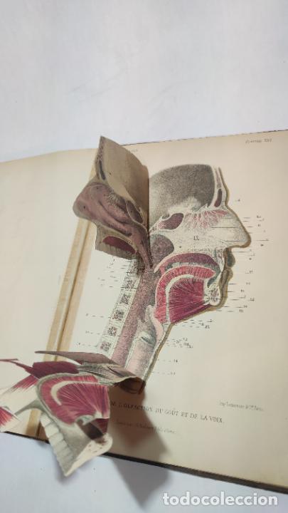 Libros antiguos: El cuerpo humano. estructuras y funciones. Eduardo Cuyer. 2 tomos. Desplegables. Madrid. 1880. - Foto 22 - 236137325