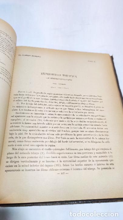 Libros antiguos: El cuerpo humano. estructuras y funciones. Eduardo Cuyer. 2 tomos. Desplegables. Madrid. 1880. - Foto 26 - 236137325