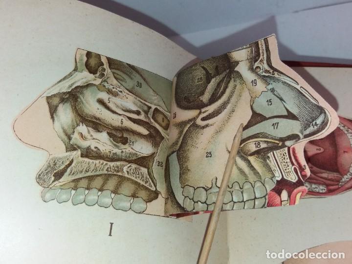Libros antiguos: ATRACTIVO LIBRO METODO DE MEDICINA NATURAL MÁS DE 120 AÑOS MODERNISTA - Foto 11 - 245311370