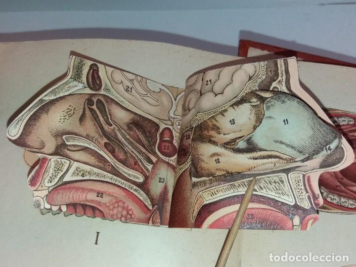Libros antiguos: ATRACTIVO LIBRO METODO DE MEDICINA NATURAL MÁS DE 120 AÑOS MODERNISTA - Foto 12 - 245311370