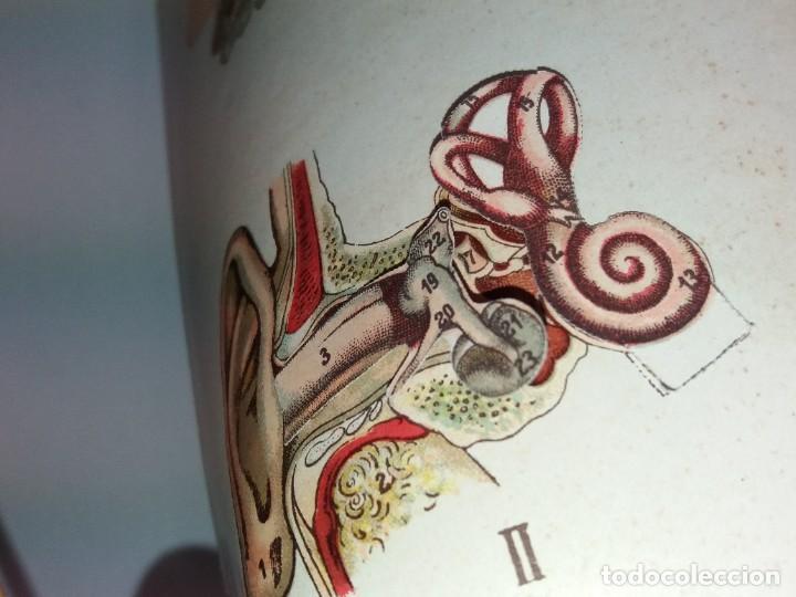 Libros antiguos: ATRACTIVO LIBRO METODO DE MEDICINA NATURAL MÁS DE 120 AÑOS MODERNISTA - Foto 14 - 245311370