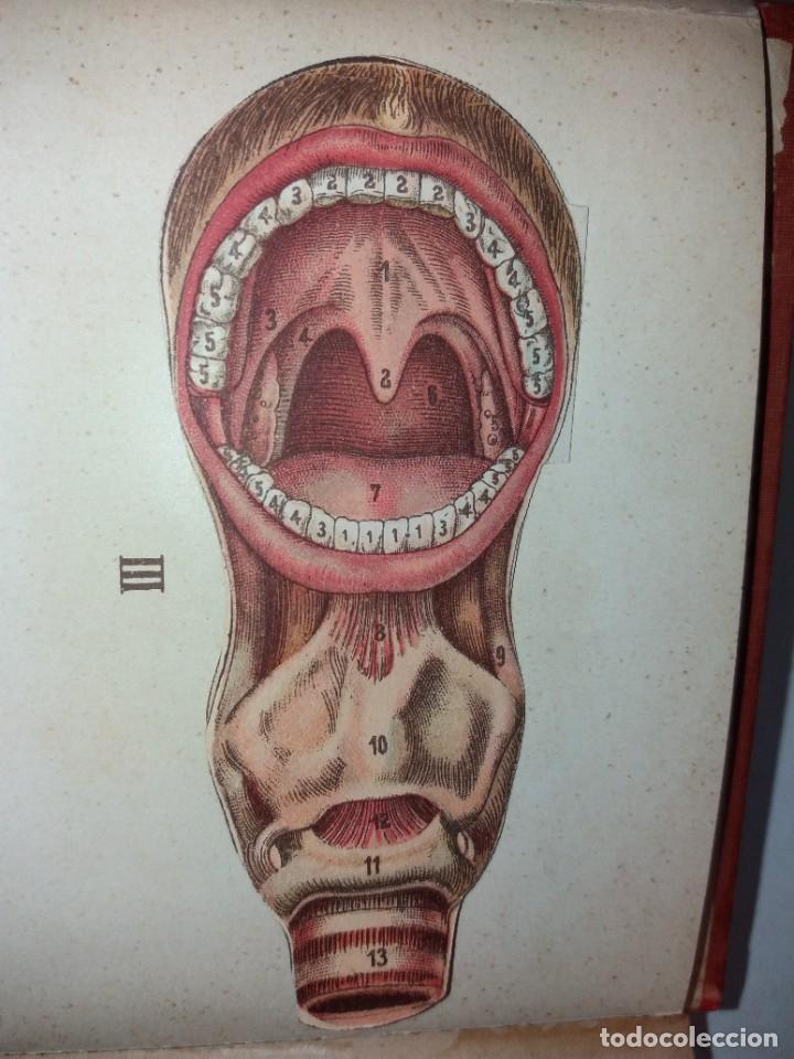 Libros antiguos: ATRACTIVO LIBRO METODO DE MEDICINA NATURAL MÁS DE 120 AÑOS MODERNISTA - Foto 17 - 245311370