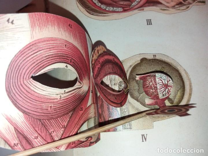 Libros antiguos: ATRACTIVO LIBRO METODO DE MEDICINA NATURAL MÁS DE 120 AÑOS MODERNISTA - Foto 18 - 245311370