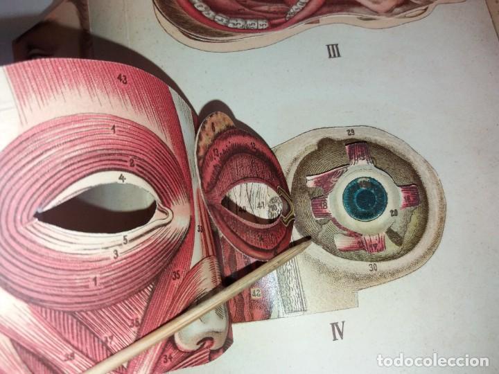 Libros antiguos: ATRACTIVO LIBRO METODO DE MEDICINA NATURAL MÁS DE 120 AÑOS MODERNISTA - Foto 19 - 245311370