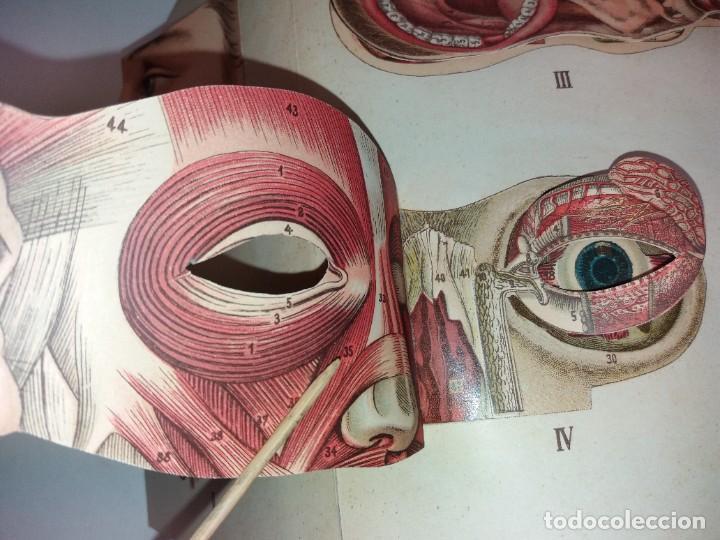 Libros antiguos: ATRACTIVO LIBRO METODO DE MEDICINA NATURAL MÁS DE 120 AÑOS MODERNISTA - Foto 20 - 245311370