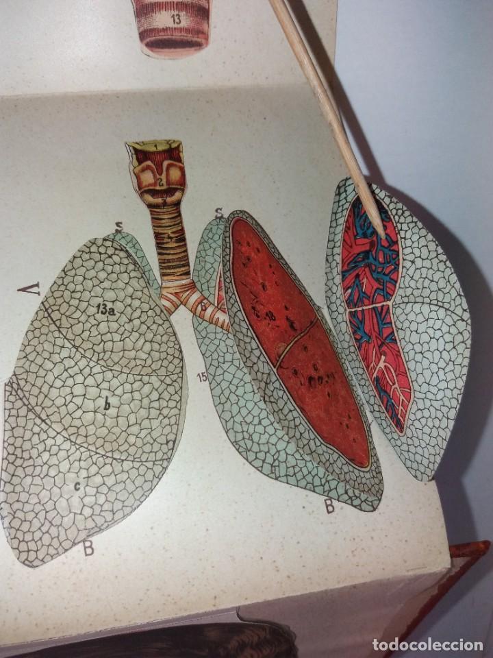 Libros antiguos: ATRACTIVO LIBRO METODO DE MEDICINA NATURAL MÁS DE 120 AÑOS MODERNISTA - Foto 26 - 245311370