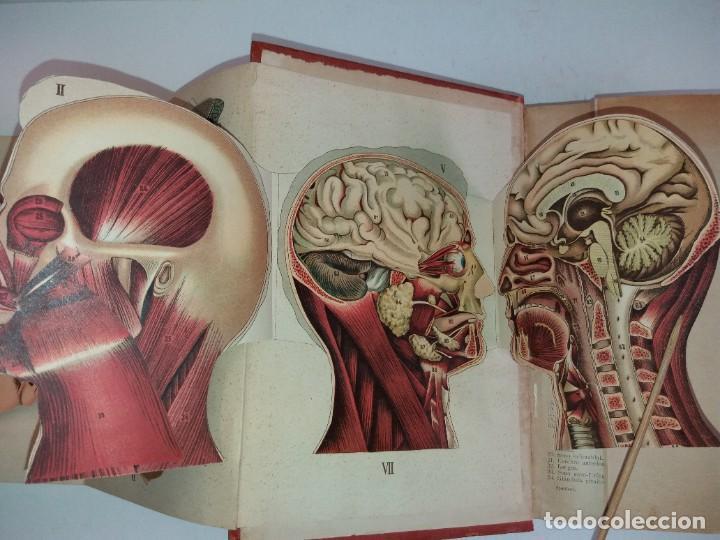 Libros antiguos: ATRACTIVO LIBRO METODO DE MEDICINA NATURAL MÁS DE 120 AÑOS MODERNISTA - Foto 28 - 245311370