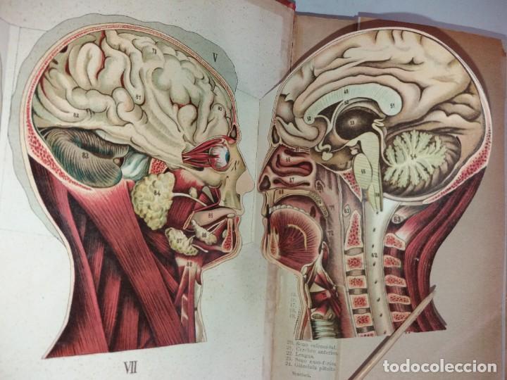 Libros antiguos: ATRACTIVO LIBRO METODO DE MEDICINA NATURAL MÁS DE 120 AÑOS MODERNISTA - Foto 29 - 245311370