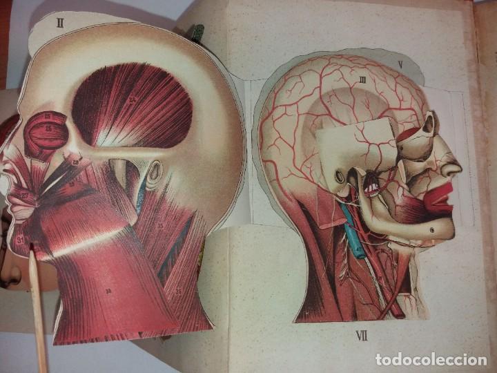Libros antiguos: ATRACTIVO LIBRO METODO DE MEDICINA NATURAL MÁS DE 120 AÑOS MODERNISTA - Foto 30 - 245311370