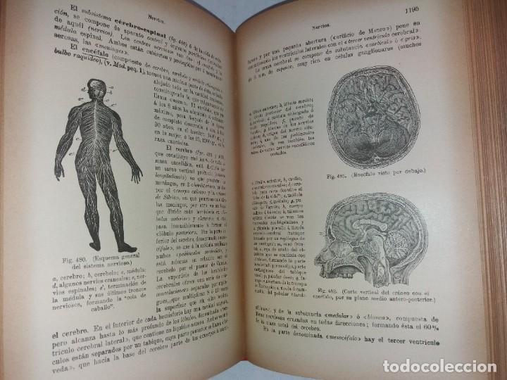 Libros antiguos: ATRACTIVO LIBRO METODO DE MEDICINA NATURAL MÁS DE 120 AÑOS MODERNISTA - Foto 89 - 245311370