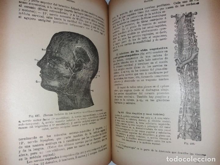 Libros antiguos: ATRACTIVO LIBRO METODO DE MEDICINA NATURAL MÁS DE 120 AÑOS MODERNISTA - Foto 90 - 245311370