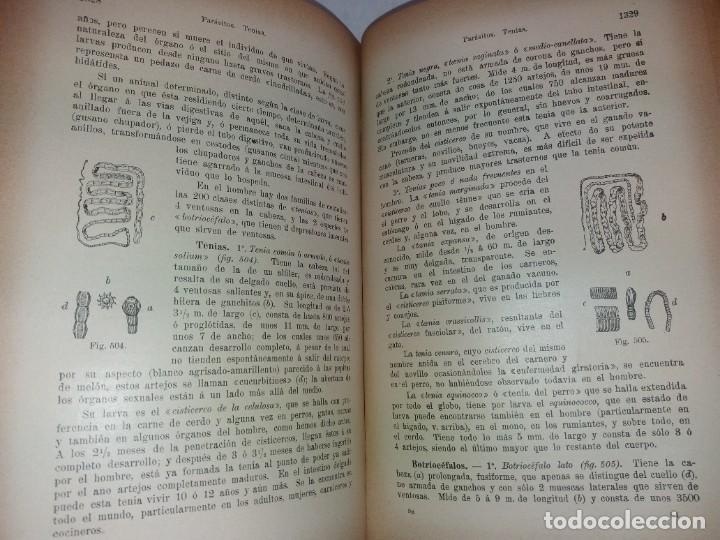 Libros antiguos: ATRACTIVO LIBRO METODO DE MEDICINA NATURAL MÁS DE 120 AÑOS MODERNISTA - Foto 94 - 245311370