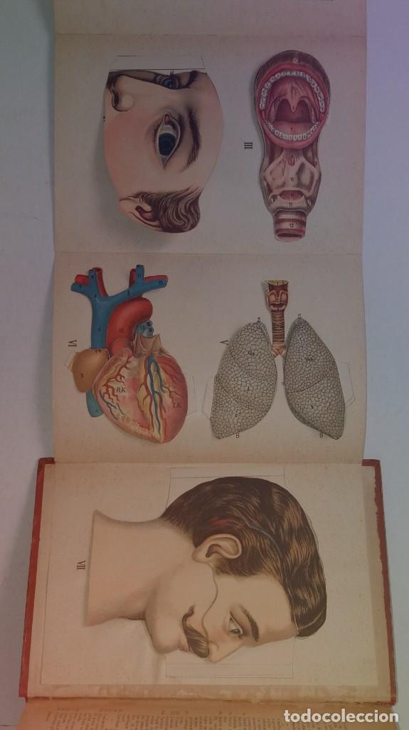 Libros antiguos: ATRACTIVO LIBRO METODO DE MEDICINA NATURAL MÁS DE 120 AÑOS MODERNISTA - Foto 95 - 245311370