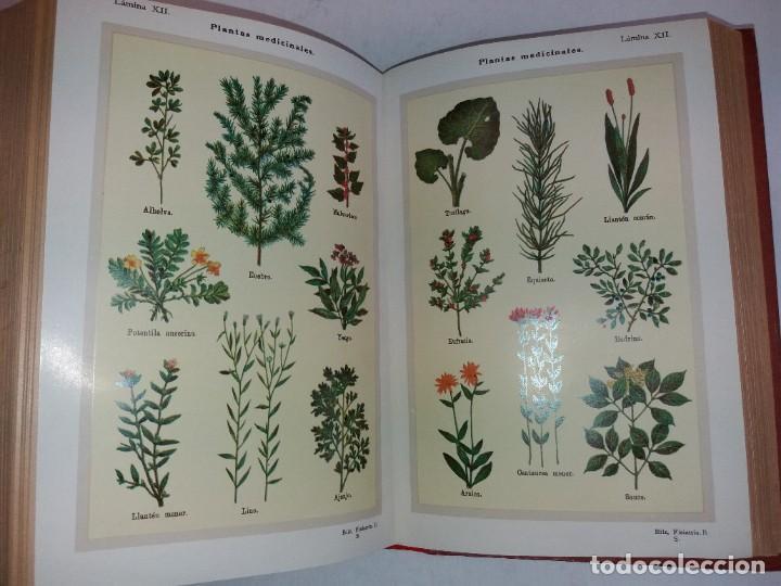 Libros antiguos: ATRACTIVO LIBRO METODO DE MEDICINA NATURAL MÁS DE 120 AÑOS MODERNISTA - Foto 99 - 245311370