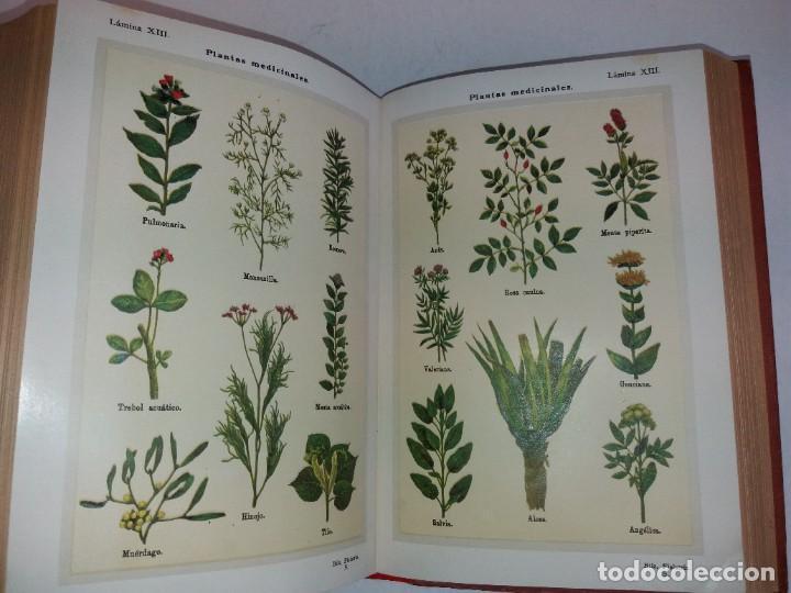 Libros antiguos: ATRACTIVO LIBRO METODO DE MEDICINA NATURAL MÁS DE 120 AÑOS MODERNISTA - Foto 100 - 245311370