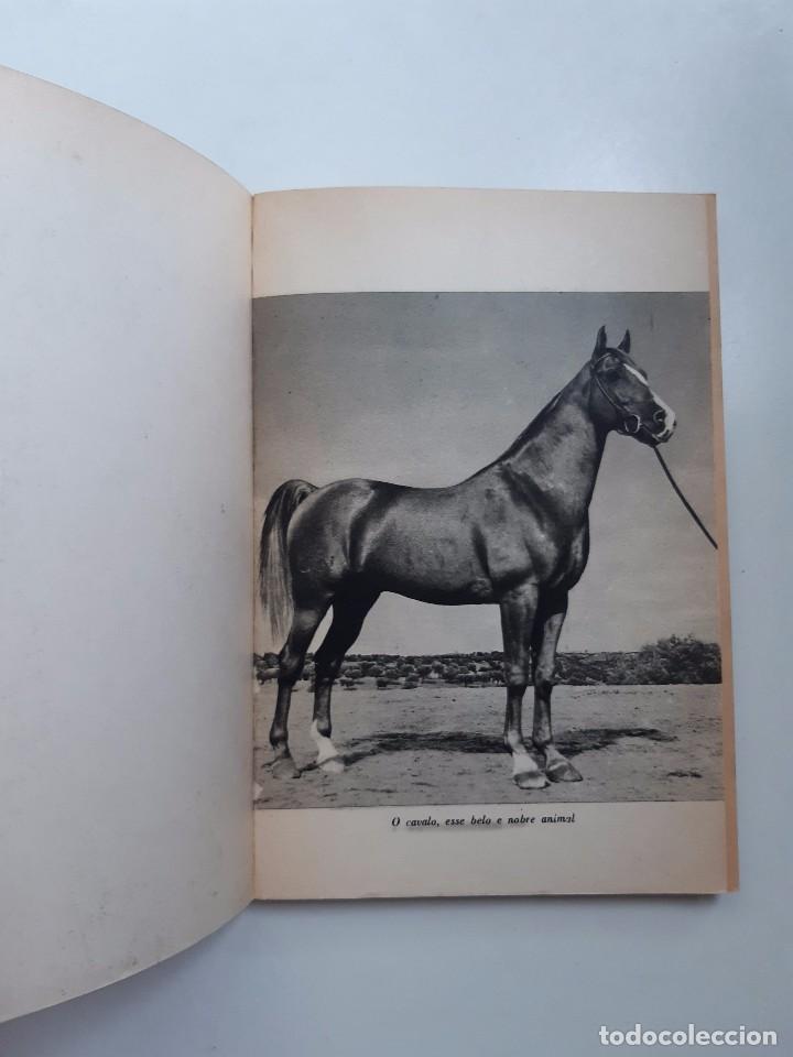 Libros antiguos: O EXTERIOR DO CAVALO Jose Miranda Do Vale Medicina Veterinaria Caballo 1966 - Foto 8 - 253899555