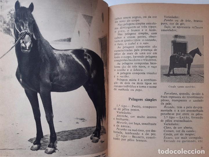 Libros antiguos: O EXTERIOR DO CAVALO Jose Miranda Do Vale Medicina Veterinaria Caballo 1966 - Foto 11 - 253899555