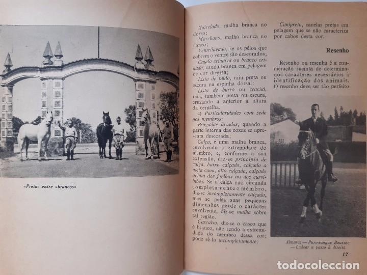 Libros antiguos: O EXTERIOR DO CAVALO Jose Miranda Do Vale Medicina Veterinaria Caballo 1966 - Foto 13 - 253899555