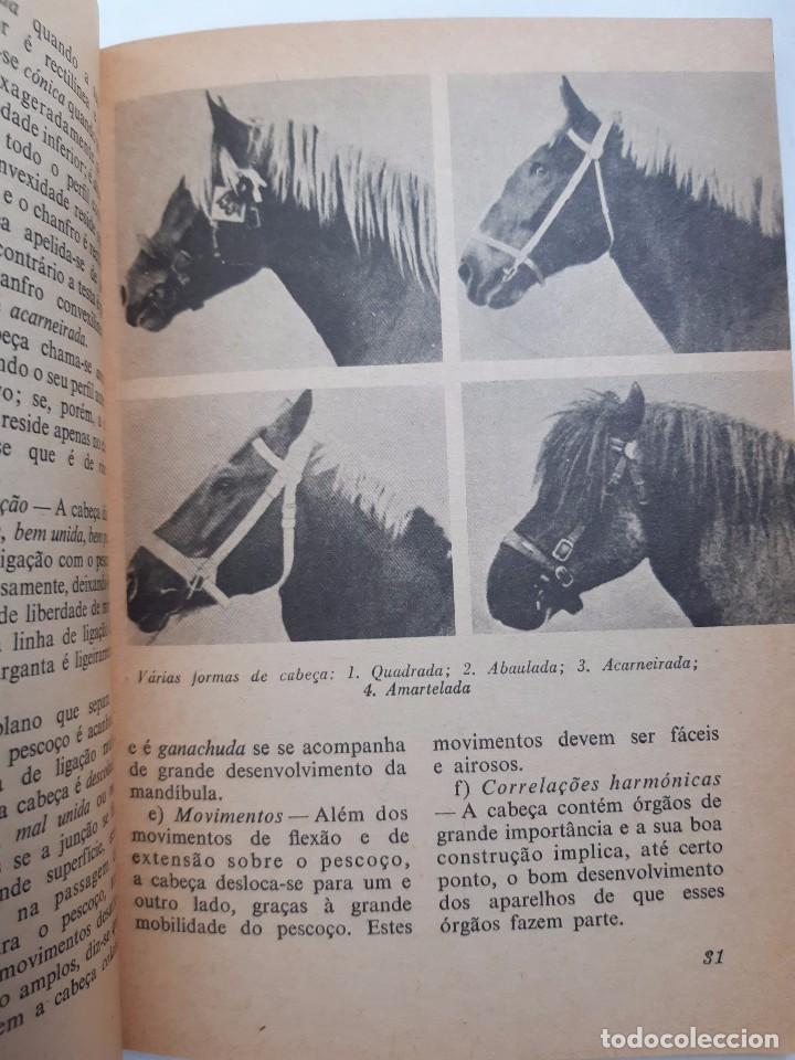 Libros antiguos: O EXTERIOR DO CAVALO Jose Miranda Do Vale Medicina Veterinaria Caballo 1966 - Foto 15 - 253899555