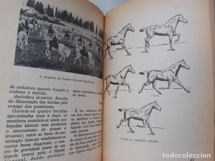Libros antiguos: O EXTERIOR DO CAVALO Jose Miranda Do Vale Medicina Veterinaria Caballo 1966 - Foto 20 - 253899555