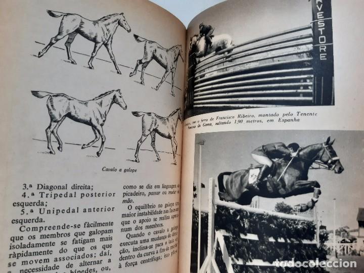 Libros antiguos: O EXTERIOR DO CAVALO Jose Miranda Do Vale Medicina Veterinaria Caballo 1966 - Foto 21 - 253899555