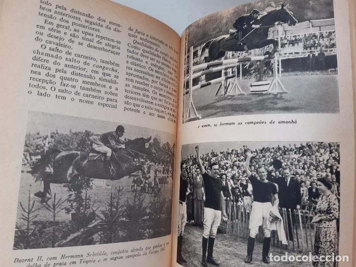 Libros antiguos: O EXTERIOR DO CAVALO Jose Miranda Do Vale Medicina Veterinaria Caballo 1966 - Foto 22 - 253899555