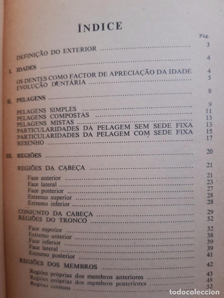 Libros antiguos: O EXTERIOR DO CAVALO Jose Miranda Do Vale Medicina Veterinaria Caballo 1966 - Foto 23 - 253899555
