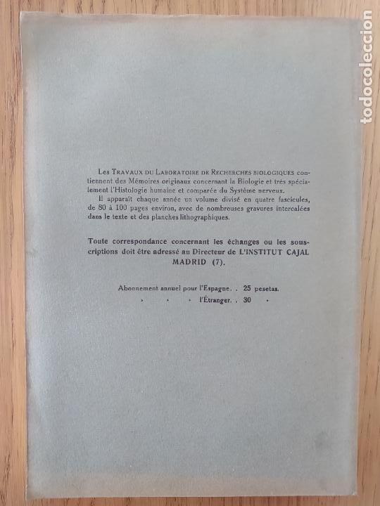 Libros antiguos: Ramon y Cajal. Travaux du laboratoire de recherches biologiques de lUniversité de Madrid. 1933 - Foto 7 - 255558370