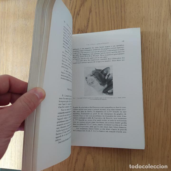 Libros antiguos: Ramon y Cajal. Travaux du laboratoire de recherches biologiques de lUniversité de Madrid. 1933 - Foto 14 - 255558370