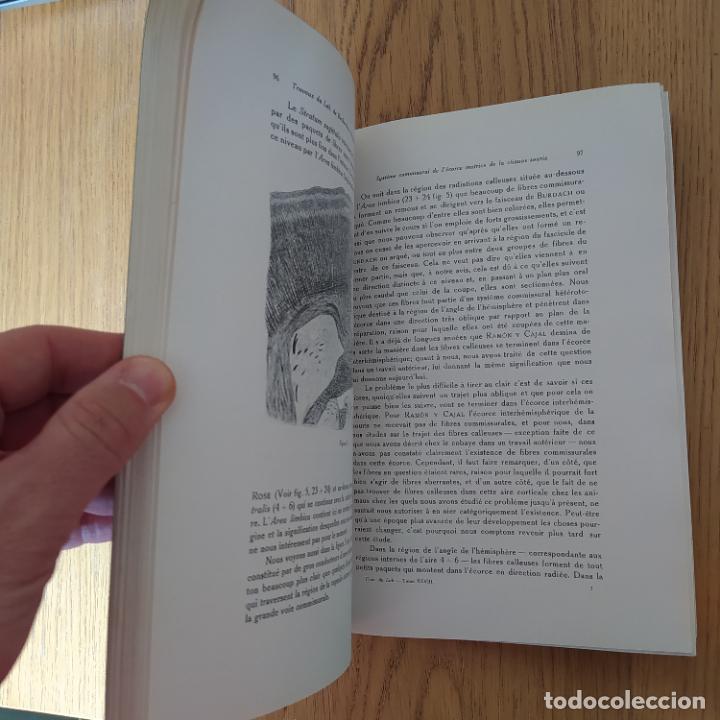 Libros antiguos: Ramon y Cajal. Travaux du laboratoire de recherches biologiques de lUniversité de Madrid. 1933 - Foto 19 - 255558370