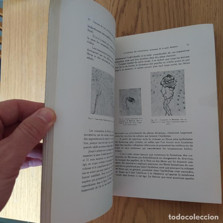 Libros antiguos: Ramon y Cajal. Travaux du laboratoire de recherches biologiques de lUniversité de Madrid. 1933 - Foto 20 - 255558370