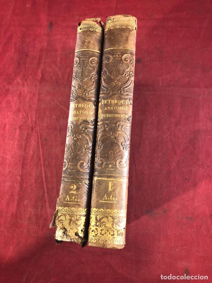 Libros antiguos: Tratado de anatomía - Foto 3 - 262546415