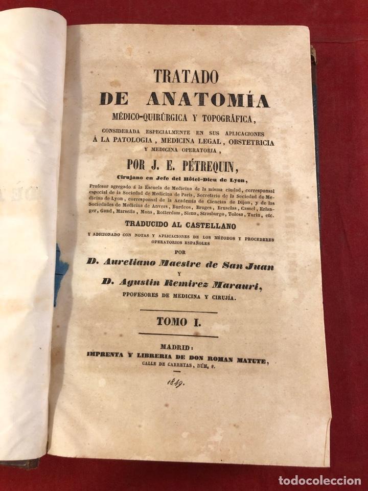 TRATADO DE ANATOMÍA (Libros Antiguos, Raros y Curiosos - Ciencias, Manuales y Oficios - Medicina, Farmacia y Salud)