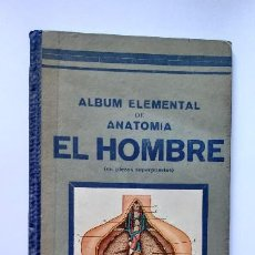 Libros antiguos: ALBUM ELEMENTAL DE ANATOMIA EL HOMBRE.CINCO LÁMINAS A TODO COLOR,RECORTADAS,SUPERPUESTAS Y NUMERADAS. Lote 264436794