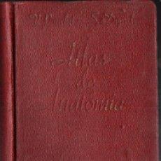 Libros antiguos: PAUCHET Y DUPRET : ATLAS MANUAL DE ANATOMÍA (GUSTAVO GILI, 1934) - 354 LÁMINAS. Lote 266682588
