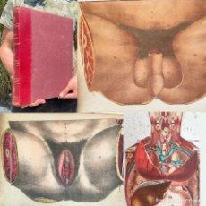 Libri antichi: ANATOMIE ICONOCLASTIQUE - WITKOWSKI, G.-J. - ANATOMIA - MEDICINA - ATLAS. Lote 267049504