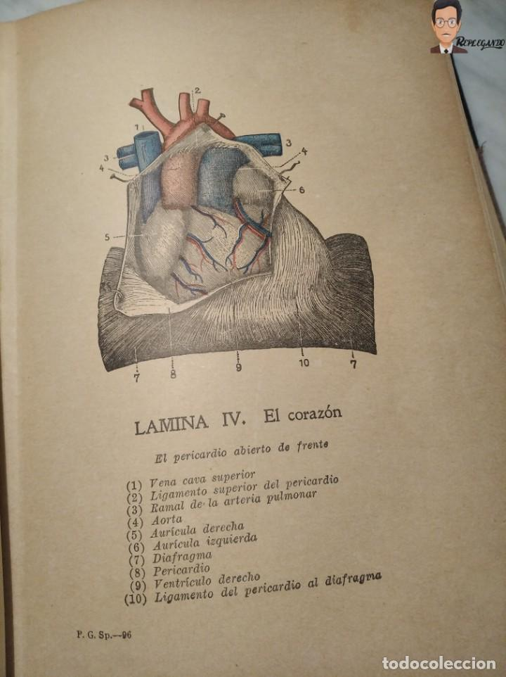 Libros antiguos: GUÍA PRÁCTICO DE LA SALUD (DE FEDERICO M. ROSSITER) AÑO 1913 LIBRO - ILUSTRADO - MEDICINA - SIGLO XX - Foto 26 - 267779614