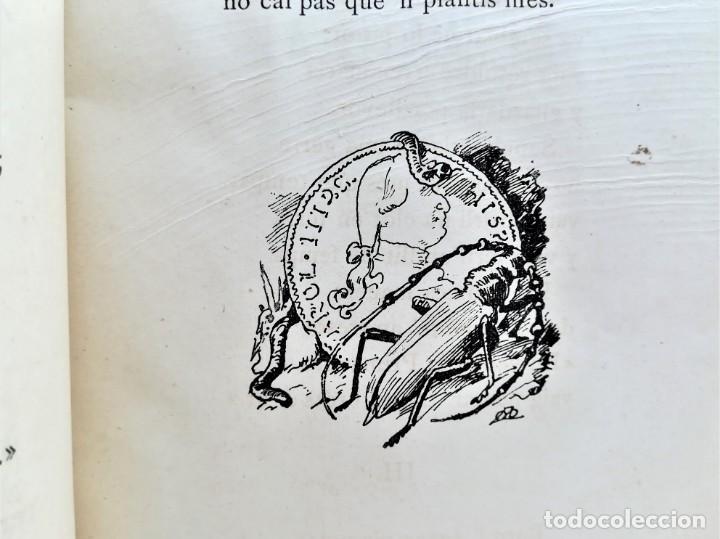Libros antiguos: LIBRO MUSICA CATALANA SIGLO XIX,CANCIONES ILUSTRADAS,CANSONS ,AÑO 1879,DIBUJOS APELES MESTRES,LETRAS - Foto 7 - 168016904