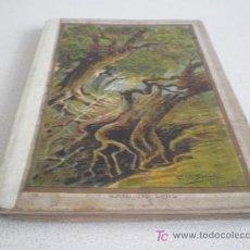 Libros antiguos: HISTORIA DE UNA PIEDRECITA - RAMON DEL VALLE. Lote 25804521