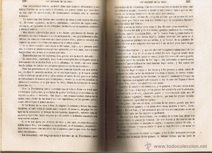 Libros antiguos: LOS MÁRTIRES DE LA SIRIA - PEDRO MATA - 1860 - TOMO I Y II EN EL VOLÚMEN - - Foto 11 - 42970859