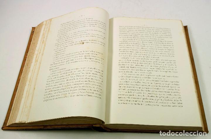 Libros antiguos: FRA FILIPPO LIPPI, NOVELA. EMILIO CASTELAR, 2ªed, 1879. 21x29 cm. - Foto 6 - 69254649